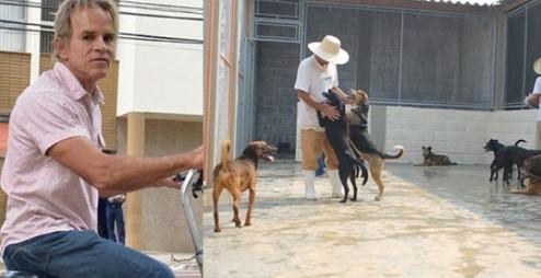 Prefeito Cancelou Carnaval Para Poder Construir Canil Para Cães Abandonados
