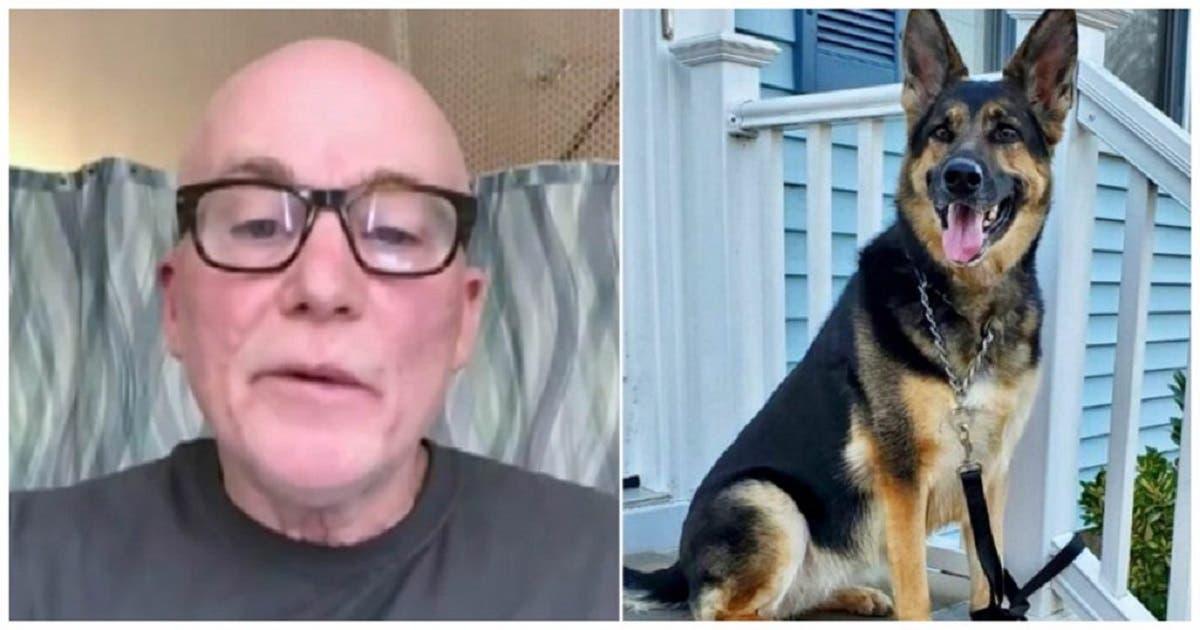 Cachorra recém-adotada salva a vida do dono durante um derrame